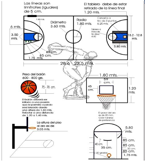 Medidas de la cancha de baloncesto
